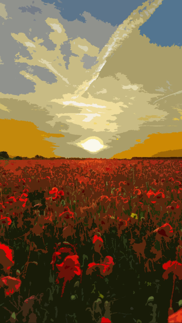 poppy fields.jpg