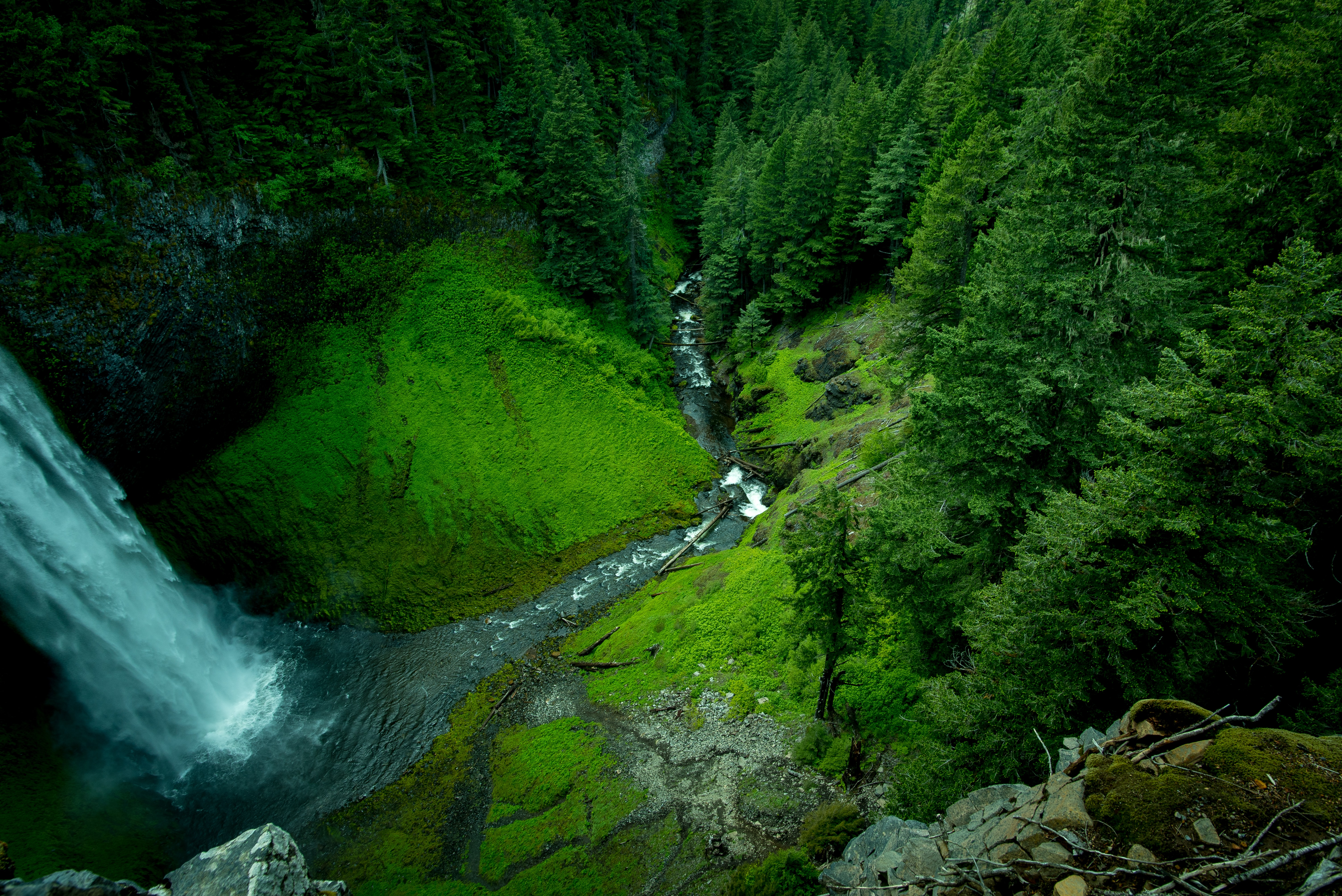 Looking down at a lush green forest and a waterfall