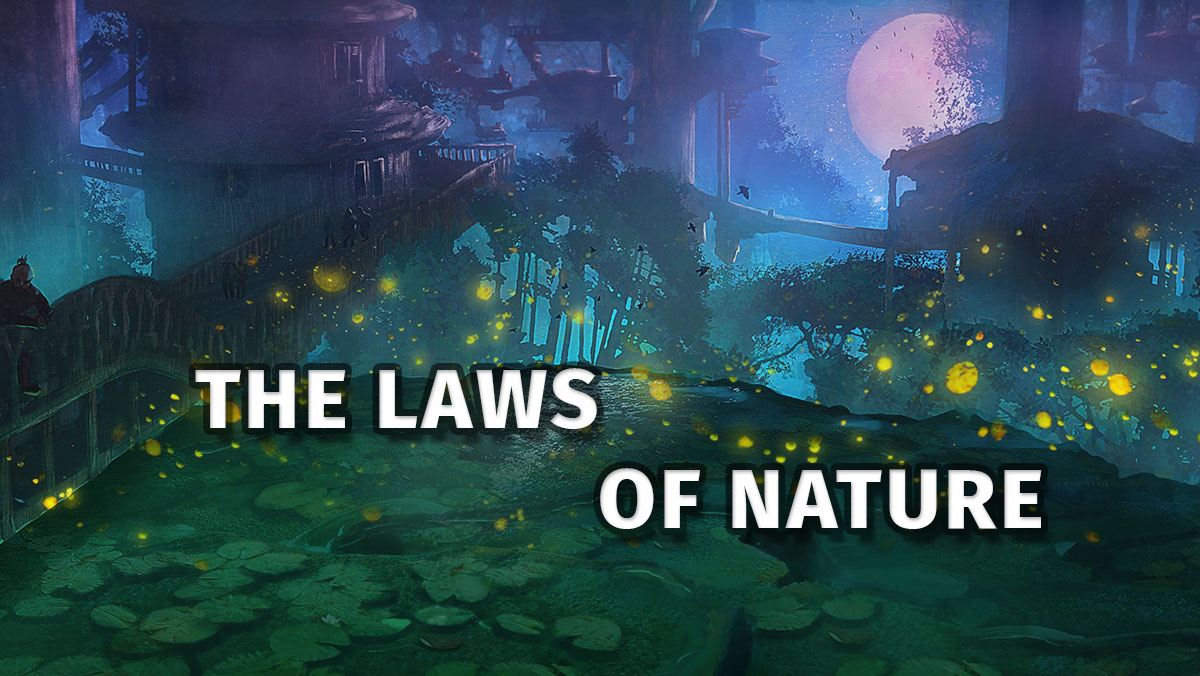 thelawsofnature_sectionheader.jpg
