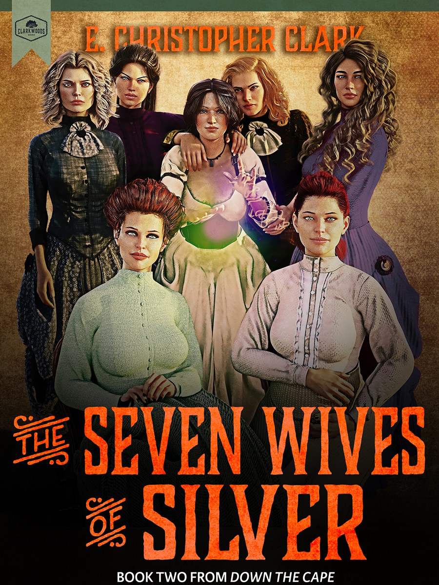 The Seven Wives of Silver cover